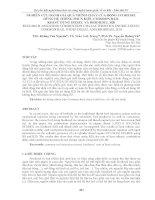 NGHIÊN cứu ĐÁNH GIÁ QUÁ TRÌNH CHÁY của ĐỘNG cơ DIESEL DÙNG hệ THỐNG PHUN KIỂU COMMON RAIL KHI sử DỤNG DIESEL và BIODIESEL b20