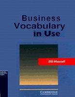 Business Vocabulary in Use - Intermediate and Upper Intermediate
