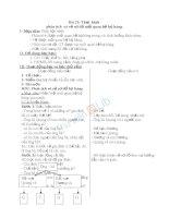 Giáo án TNXH 3 bài thực hành phân tích và vẽ sơ đồ mối quan hệ họ hàng