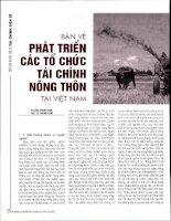 Bàn về phát triển các tổ chức tài chính nông thôn tại việt nam