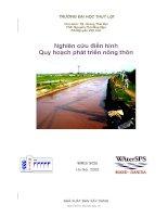 Nghiên cứu điển hình quy hoạch phát triển nông thôn