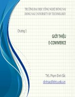 Bài giảng Thương mại điện tử: Chương 1  ThS. Phạm Đình Sắc