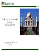 Chiến lược phát triển sản phẩm tại thị trường Ấn Độ