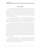 THỰC TRẠNG VÀ GIẢI PHÁP THÚC ĐẨY XUẤT KHẨU HÀNG DỆT MAY CỦA VIỆT NAM SANG HOA KỲ