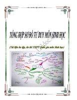 Tổng hợp các Sơ đồ tư duy môn Sinh học (Tài liệu ôn thi THPT Quốc gia)