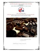 Báo cáo phân tích thống kê và xử lý số liệu