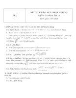 Đề thi khảo sát chất lượng môn toán lớp 12   đề  2