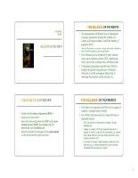 Lecture multinational financial management chapter 4   ngo thi ngoc huyen