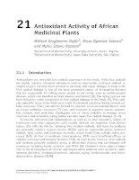 Nghiên cứu về hoạt tính chống oxy hóa của các cây thuộc African Antioxidant Activity of African Medicinal Plants