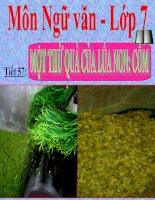 Bài giảng ngữ văn 7 bài 14 một thứ quà của lúa non cốm 12