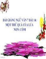 Bài giảng ngữ văn 7 bài 14 một thứ quà của lúa non cốm 5