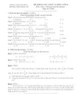Đề khảo sát chất lượng môn toán lớp 6