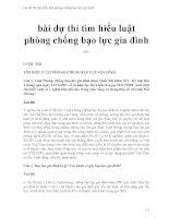 bài dự thi tìm hiểu luật phòng chống bạo lực gia đình