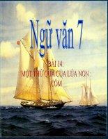 Bài giảng ngữ văn 7 bài 14 một thứ quà của lúa non cốm 4