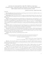 ĐÁNH GIÁ ẢNH HƯỞNG TRUYỀN THÔNG GIÁO DỤC VỀ KIẾN THỨC, THÁI ĐỘ THỰC HÀNH & CÁC CHỈ SỐ KIỂM SOÁT TRÊN BỆNH NHÂN ĐÁI THÁO ĐƯỜNG TÍP II