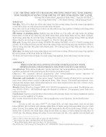 565 CÁC TRƯỜNG HỢP CÓ THAI BẰNG PHƯƠNG PHÁP THỤ TINH TRONG ỐNG NGHIỆM SỬ DỤNG TINH TRÙNG TỪ MÔ TINH HOÀN TRỮ LẠNH