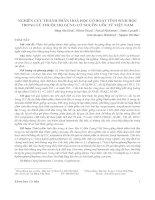 Khoa học Cơ bản 1 NGHIÊN CỨU THÀNH PHẦN HOÁ HỌC CÓ HOẠT TÍNH SINH HỌC TRONG CỦ THUỘC HỌ GỪNG CÓ NGUỒN GỐC TỪ VIỆT NAM