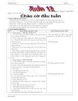 BỘ GIÁO ÁN LỚP 3 TUẦN 12 (2012-2013) - ĐƯỢC BÌNH CHỌN XUẤT SẮC NHẤT CẤP TRƯỜNG, DỰ THI GVDG CẤP HUYỆN