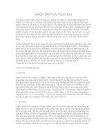MỐI QUAN hệ của NGÔN NGỮ và văn HOÁ