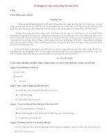 Đề thi giữa học kì 2 môn Tiếng Việt lớp 4 năm 2014