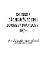 CHƯƠNG 7 CÁC NGUYÊN TỐ DINH DƯỠNG VÀ PHÂN BÓN VI LƯỢNG