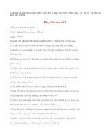 Đề kiểm tra học kì 1 môn địa lý lớp 9 năm 2013 (P1)
