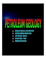 PETROLEUM DEVELOPMENT GEOLOGY PETRO GEOL