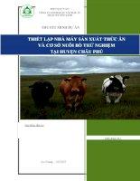 THIẾT lập NHÀ máy sản XUẤT THỨC ăn và cơ sở NUÔI bò THỬ NGHIỆM tại  HUYỆN CHÂU PHÚ