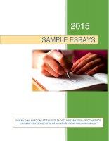 Sample essays vietnam 2015 (band 8)