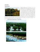 Báo cáo môn Đất Ngập Nước chuyên ngành Quản Lý Đất Đai