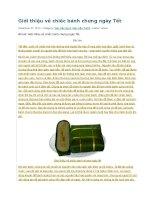 Giới thiệu về chiếc bánh chưng ngày tết