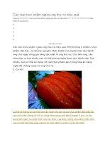 Các loại thực phẩm ngừa ung thư vú hiệu quả