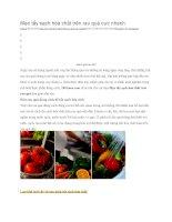 Mẹo tẩy sạch hóa chất trên rau quả cực nhanh
