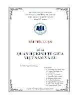 Tiểu luận Quan hệ kinh tế giữa Việt Nam và EU