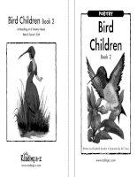Sách tiếng Anh cho trẻ em Book 7 bird children book 2