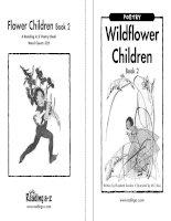 Sách tiếng Anh cho trẻ em Book 10 wildflower children book 2