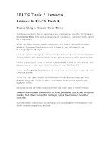 IELTS task 1 lesson