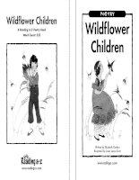 Sách tiếng Anh cho trẻ em Book 6 wildflower children