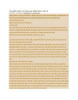 Thuyết minh về cây lúa việt nam văn 9