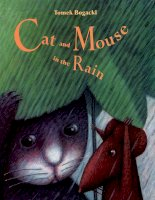 Sách tiếng Anh cho trẻ em Cat and mouse in the rain