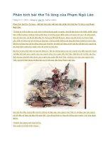 Phân tích bài thơ tỏ lòng của phạm ngũ lão