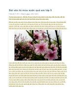 Bài văn tả mùa xuân quê em lớp 5