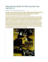 Phân tích tác phẩm chí phèo của nam cao ngữ văn 11