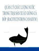 Thuyết trình quản lý chất lượng nước trong trại sản xuất giống cá bóp
