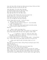 Câu hỏi đọc hiểu về bài thơ tiếng hát con tàu chế lan viên