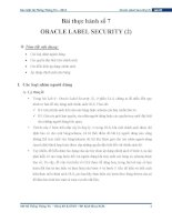 Oracle label security(2)