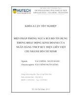 Biện pháp phòng ngừa rủi ro tín dụng trong hoạt động kinh doanh của NH TMCP bưu điện liên việt CN hồ chí minh