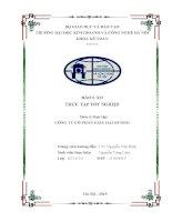 Báo cáo thực tập tốt nghiệp kế toán tại công ty cổ phần giầy hải dương