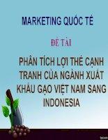 Thuyết trình môn marketing quốc tế phân tích lợi thế cạnh tranh của ngành xuất khẩu gạo việt nam sang indonesia