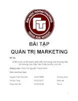 Tiểu luận môn quản trị marketing chiến lược và kế hoạch phát triển thị trường của thương hiệu trà ôlong cao cấp tâm châu tại khu vực hà nội